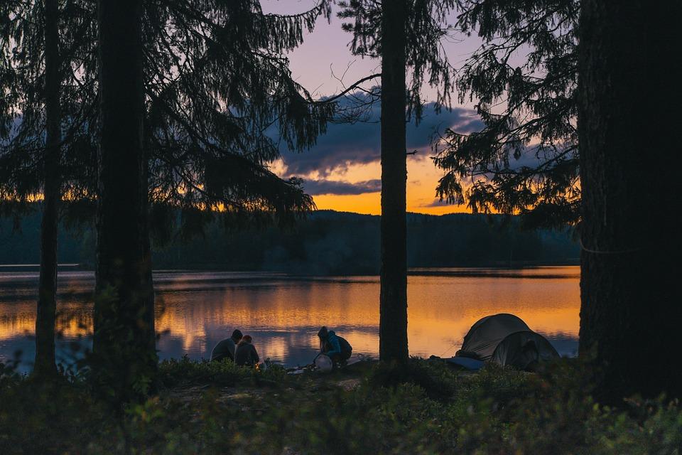 Un séjour dans le vert en camping à l'ile Ré